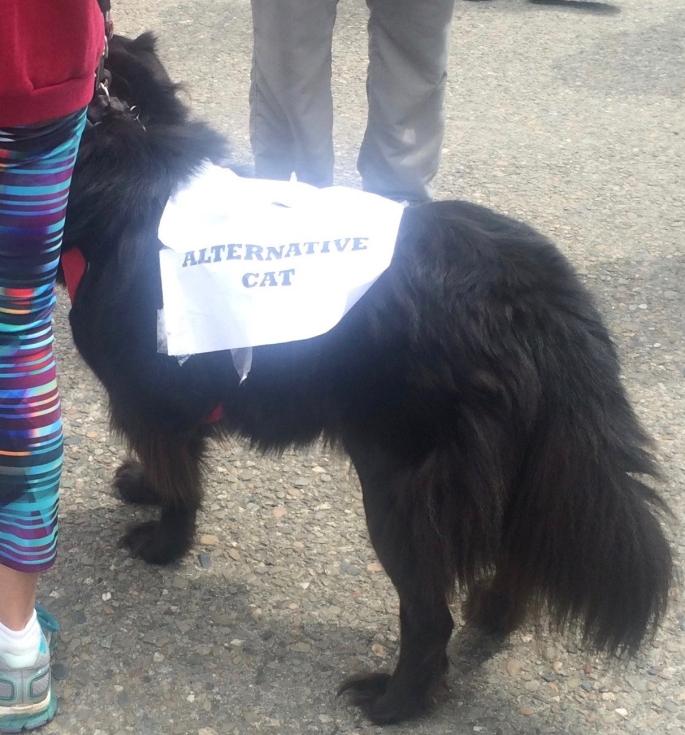 Alternative Cat San Francisco Science March