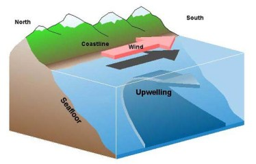 Upwelling Diagram from Sanctuary Quest 2002, NOAA/OER